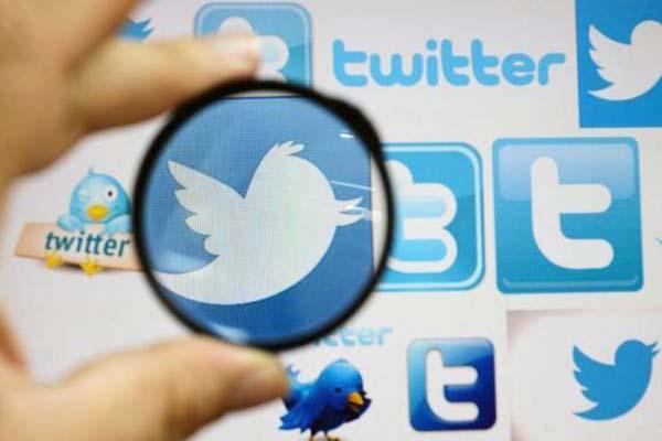LinkedIn, Pinterest more popular than Twitter
