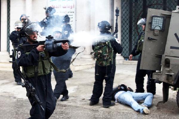 Israel arrests 17 Palestinians in West Bank