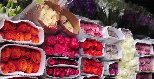 Valentine's blossoms worth $475M sold in Turkey yearly