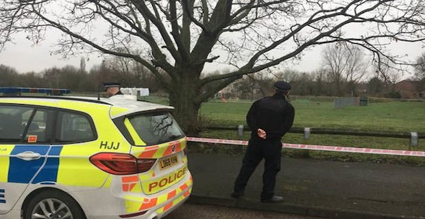 Girl, 17, dies in Harold Hill park