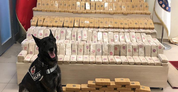 Over 80 kg of illicit drugs seized in Turkey