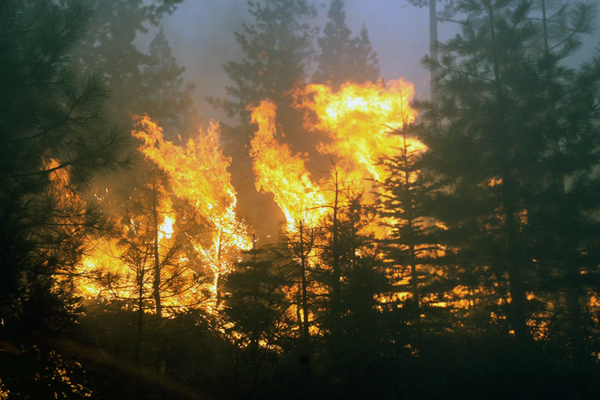 California Wildfire Grows To 43 Square Miles