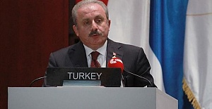 'NATO allies should back Turkey's anti-terror push'