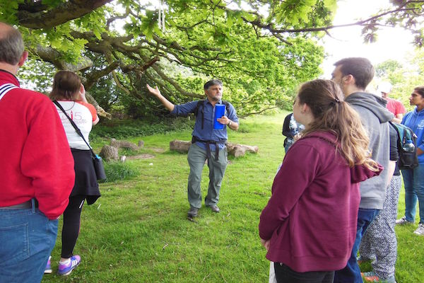 The Treasure of Trees Free Guided Walk