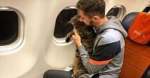 Aeroflot: 'Fat cat smuggler' falls foul of Russian airline